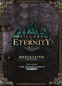 Hra na PC Pillars of Eternity