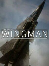 Elektronická licence PC hry Project Wingman STEAM